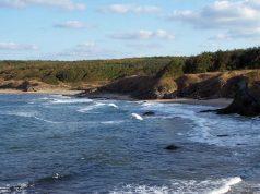 почистване на диви плажове