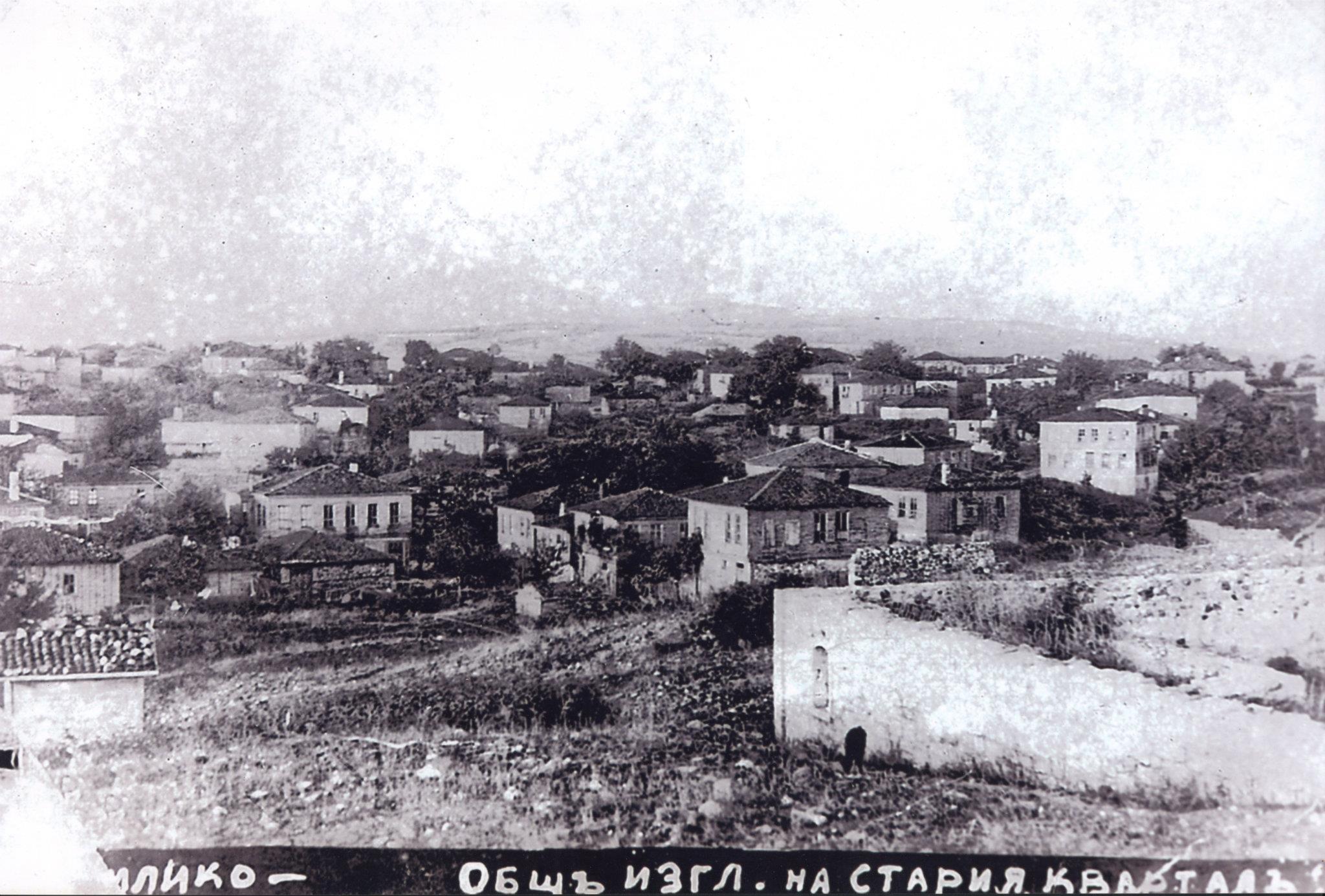 Преображенското въстание в Странджа през погледа на Димитър Стамболиев
