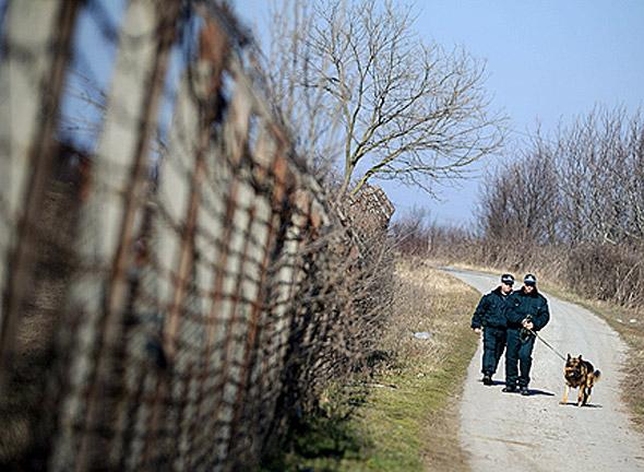 Изпращат горски да пазят границата с Турция за шап