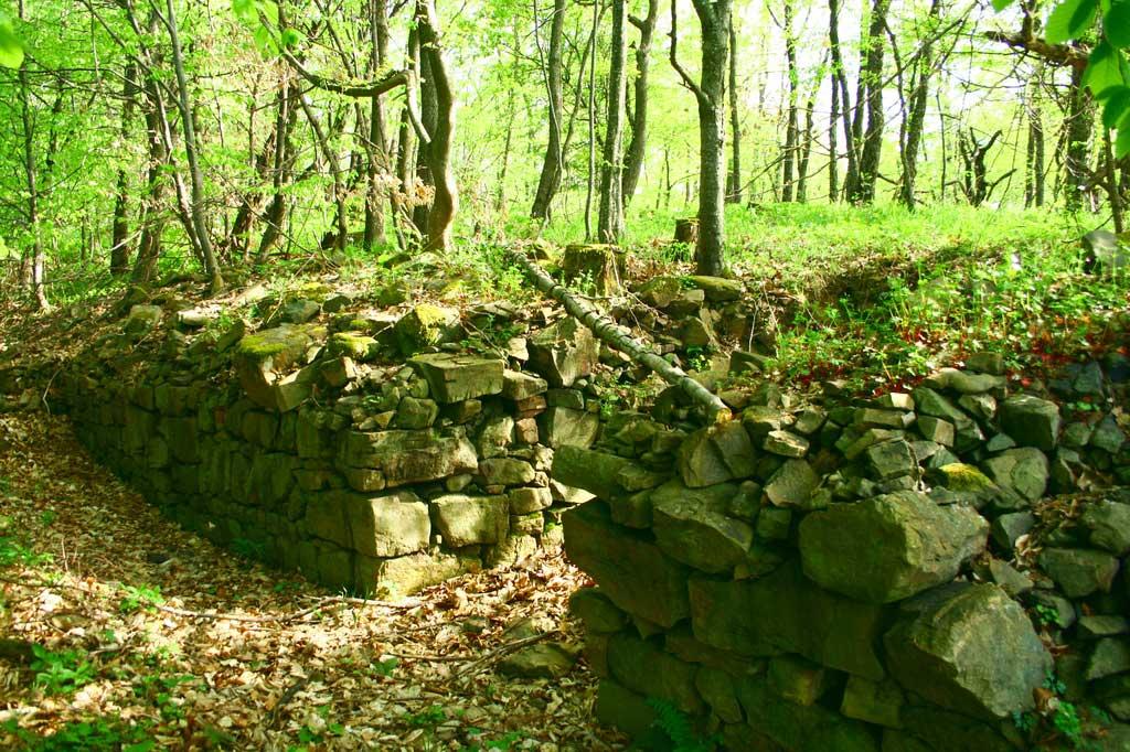 Крепост Ургури