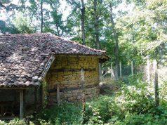 Параклис Света Петка, село Кондолово