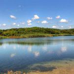 """Защитена местност """"Устието на река Велека"""""""