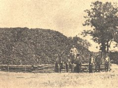 Историята на теснолинейката Ахтопол-Бродилово-Кости