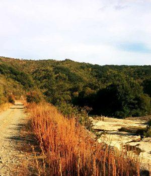 Туристически маршрут от с. Българи до с. Велика