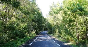 Откриха рехабилитирания път от село Кости до село Българи