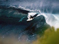 8 снимки на делфини и сърфисти каращи заедно