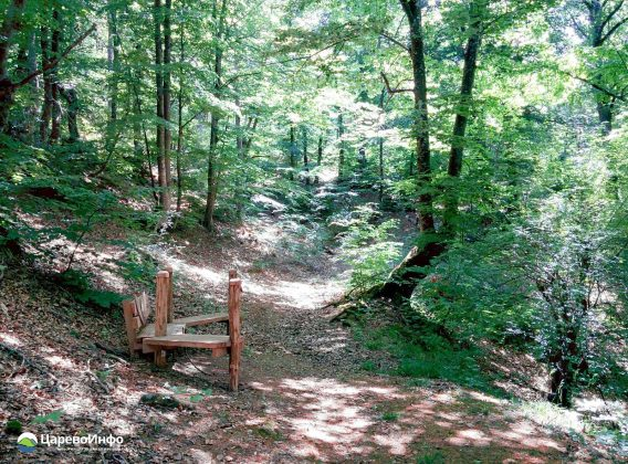 """Еко пътека """"В Царството на зелениката"""""""
