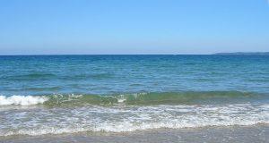 Черно море е 30 пъти по-чисто от нормите