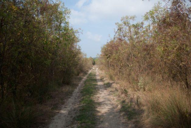 Вело маршрут Синеморец - Бродилово - Синеморец