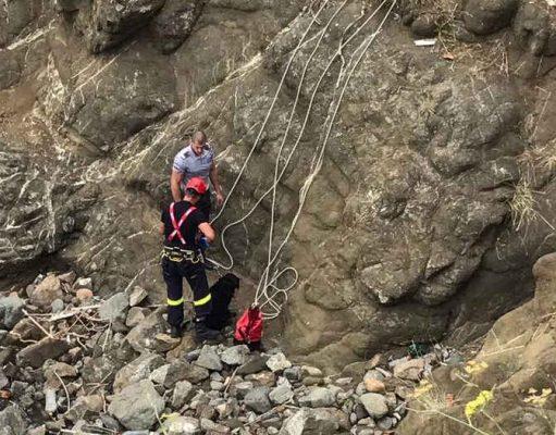 Пожарникари спасиха бедстващо куче в Ахтопол