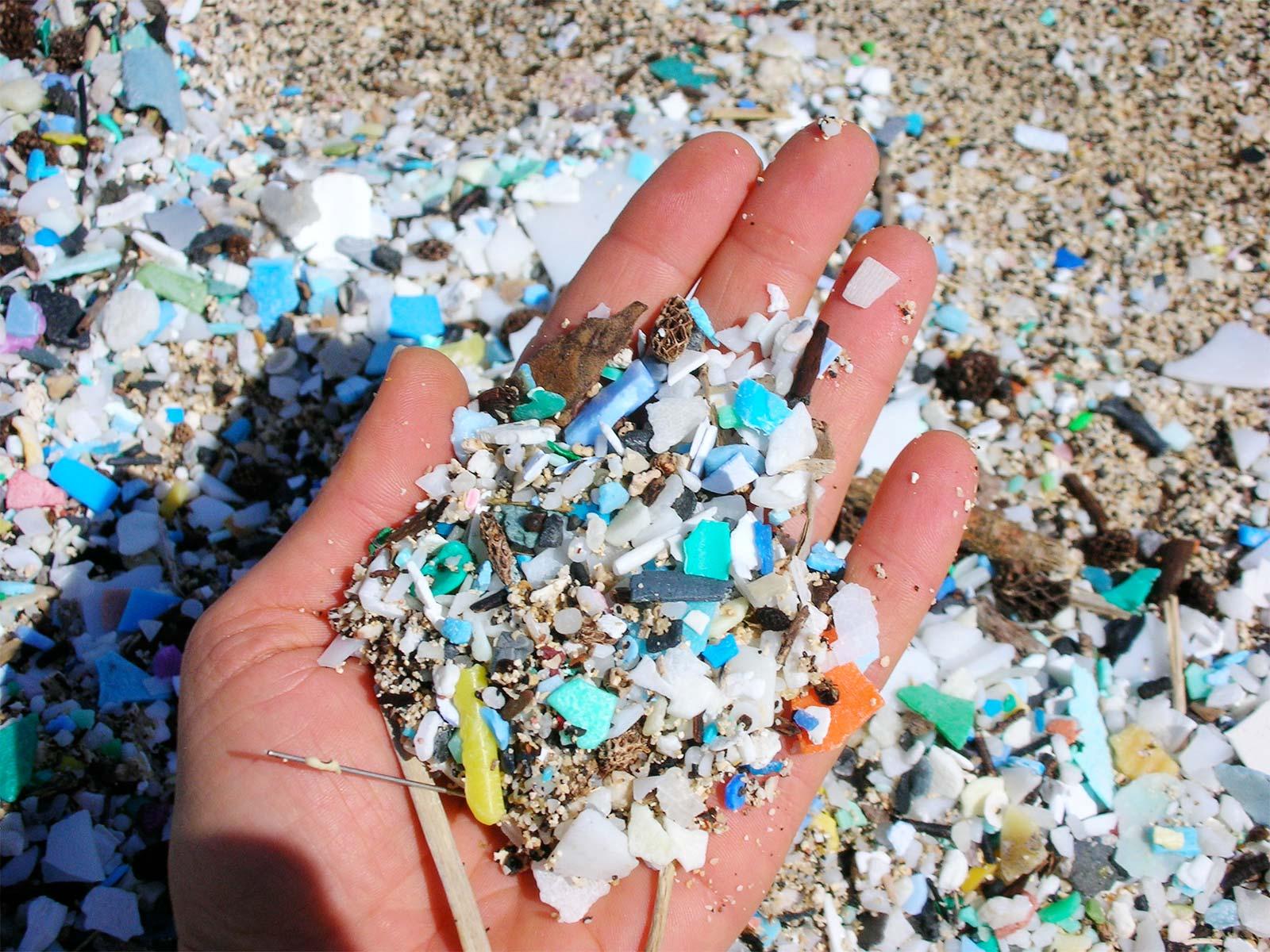 Черно море е сред най-замърсените с микропластмаса водни басейни в света
