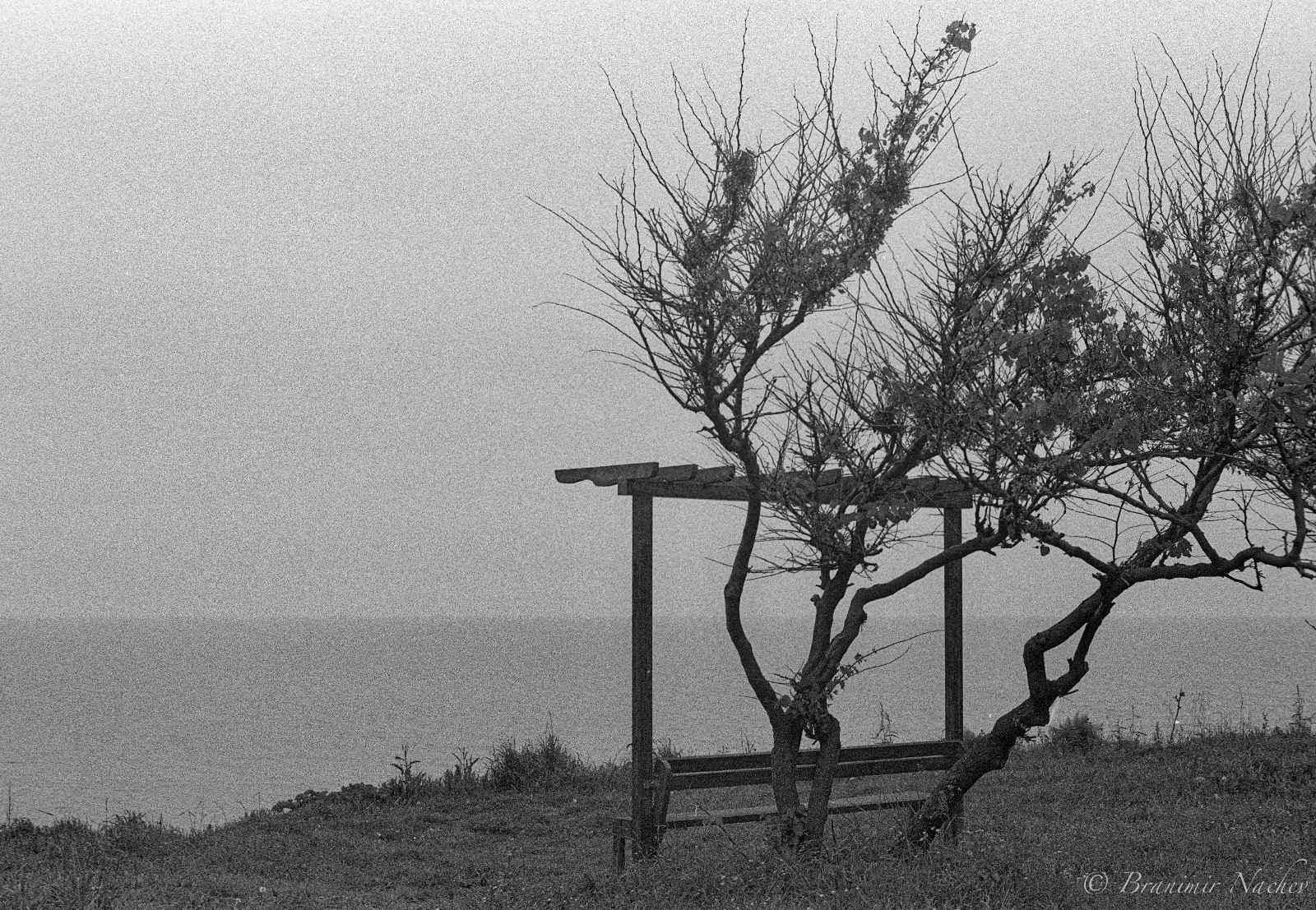 През обектива на Бранимир Начев – снимки от Царево, част I