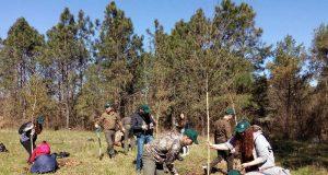 Ученици от Царево засадиха дръвчета в Приморско