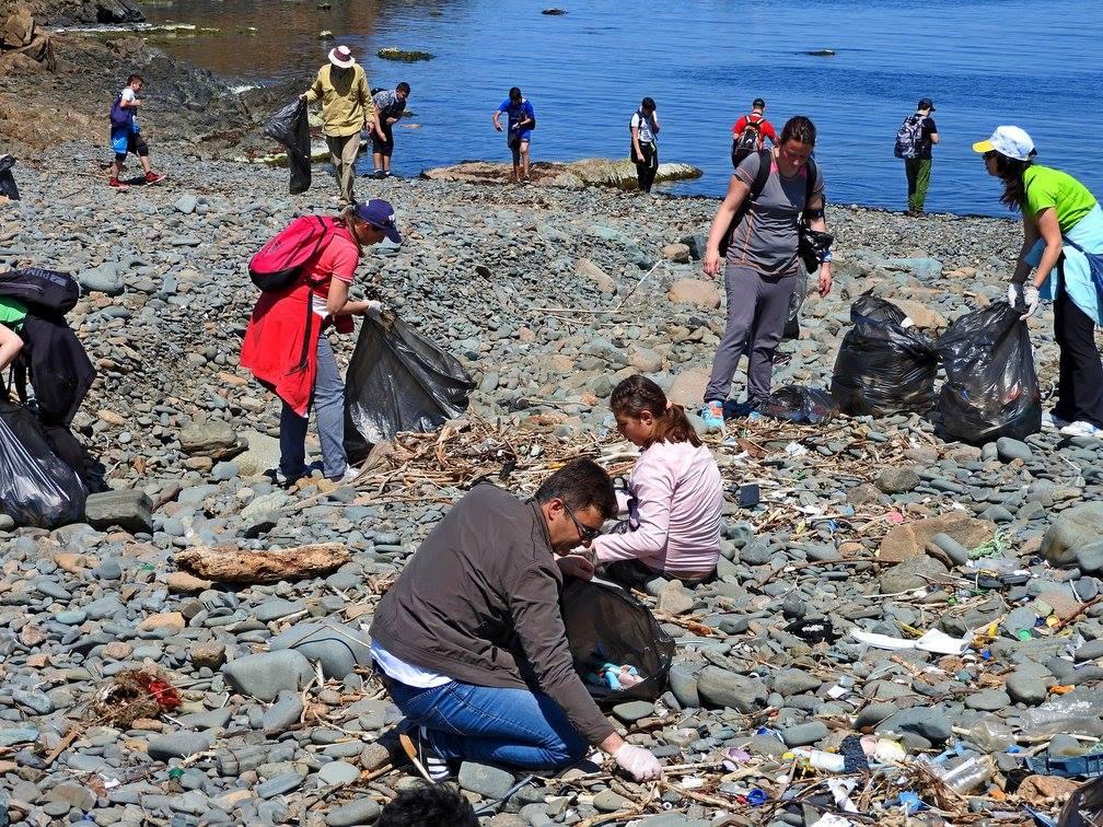 Снимка на фокус, април 2018, Кметът на Ахтопол почиства плажове заедно със семейството си и други доброволци