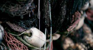 Арести и тежки глоби за незаконен риболов се предвиждат в промени в закона