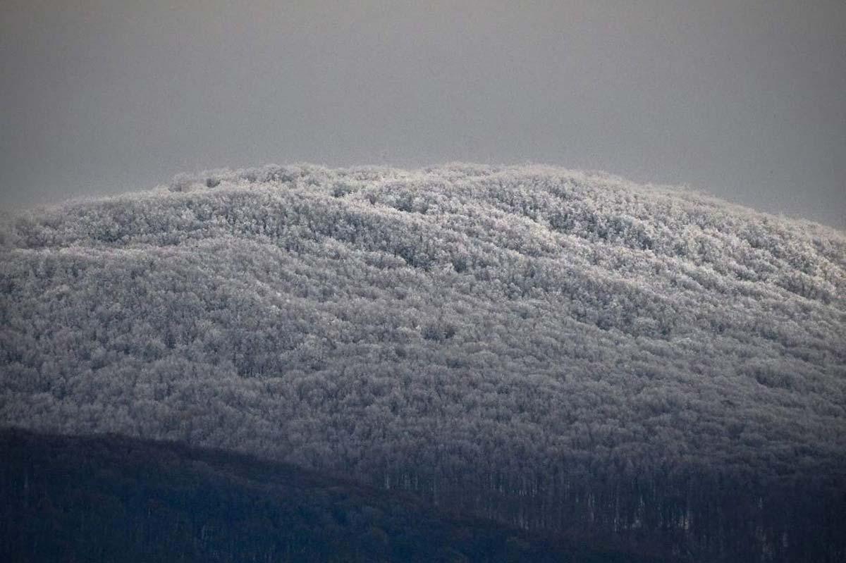 Първият сняг в Странджа